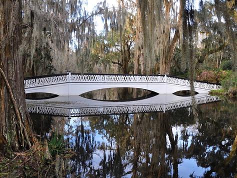 Magnolia Plantation Gardens (Charleston, South Carolina, USA)