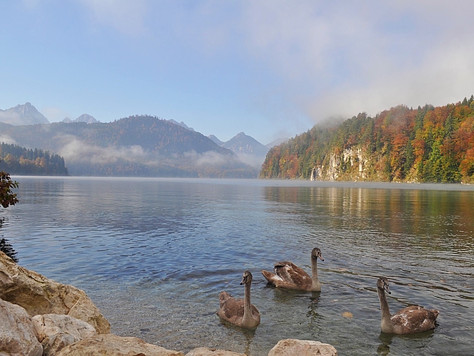 Lake Below the Castles in Fussen (Germany)