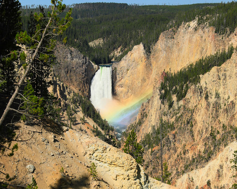 Yellowstone & Grand Tetons Part 5: Yellowstone (Photo Safari Tour & Lake to Mammoth Hot Springs)