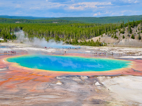 Yellowstone & Grand Tetons Part 2: Yellowstone's Lower Loop (Geysers, Canyons and Waterfalls)