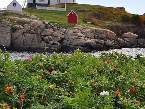 Nubble Lighthouse (Cape Neddick, Maine, USA)