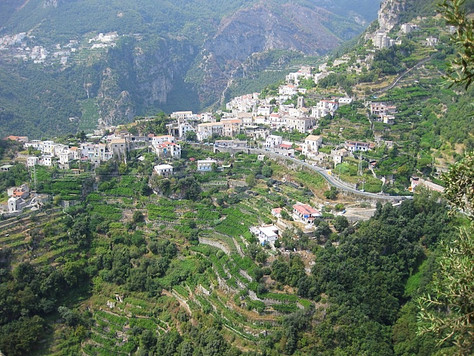 Terraced Hillside (Ravello, Italy)