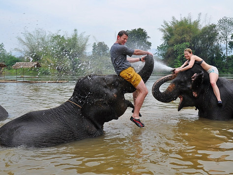 Swimming with Elephants (Thailand)