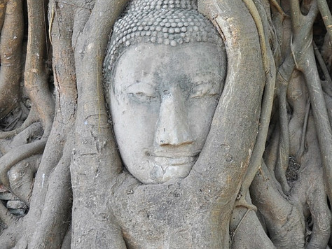 Buddha Head in Tree (Ayutthaya, Thailand)