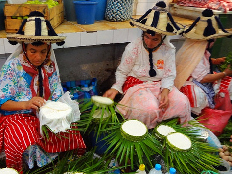 Women Wrapping Goat Cheese (Tangier, Morocco)