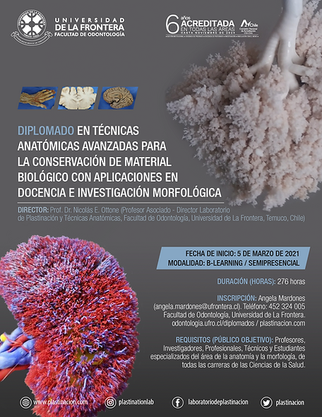 afiche-diplomado-1.png