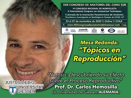 2020-CONOSUR-HERMOSILLA.jpg