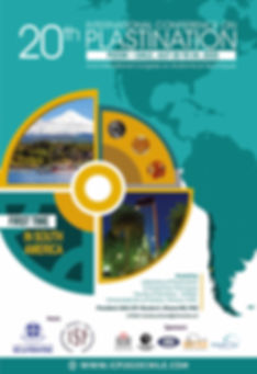 Flyer_ICP_2020_CHILE_3_bd.jpg