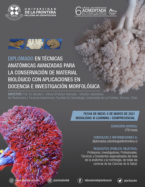 afiche-diplomado-2-01.png