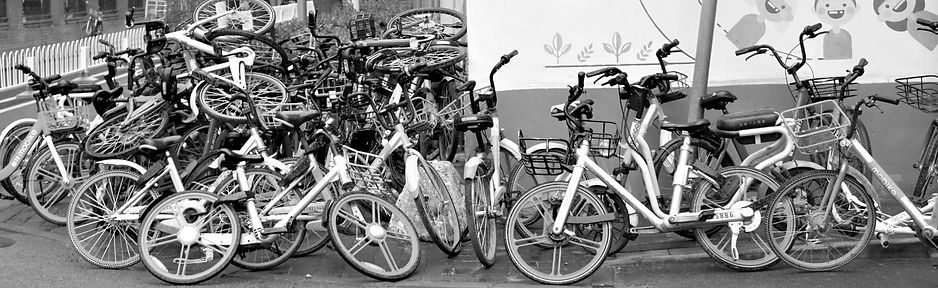 Chinese Bicycles Business Model Risk Wid