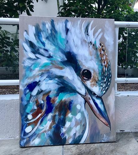 Coastal Kookaburra