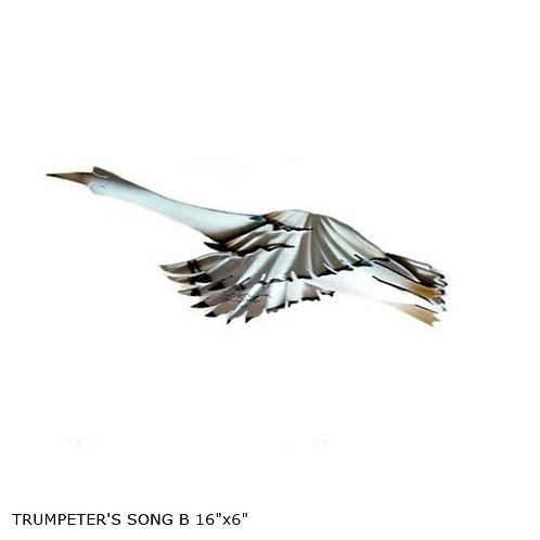 """""""Trumpeters Song B"""" ~ 16x6 inches"""