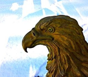 Eagle and Sky