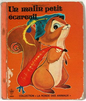 Un malin petit écureuil