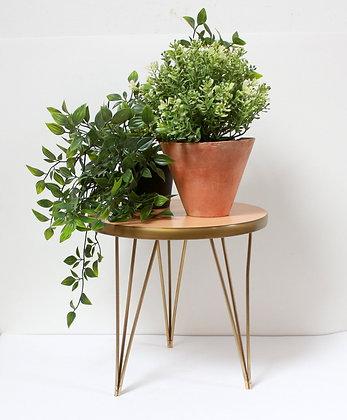 Mini table tripode