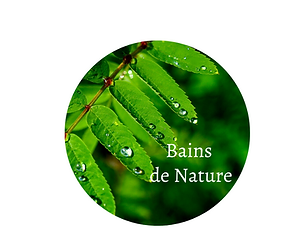 Logo Programme BAIN DE NATURE.png