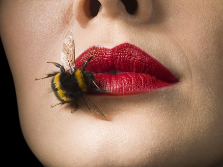From Botox to Beetox: Bee venom in anti-aging products