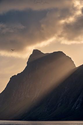 Lofoten Sonnenuntergang