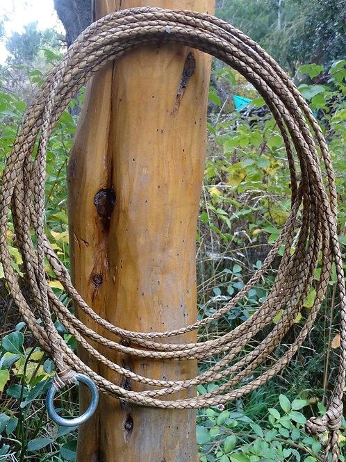 "Rawhide riata ,4 strands braided ""Chivero "". LAZ 01."