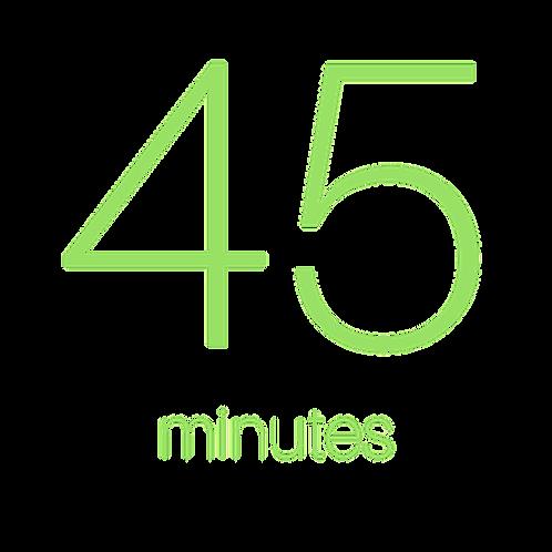 45 Minute Individual Consultation