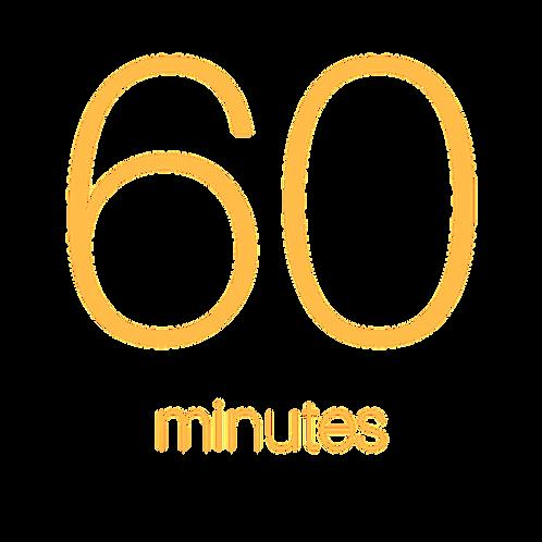 60 Minute Individual Consultation