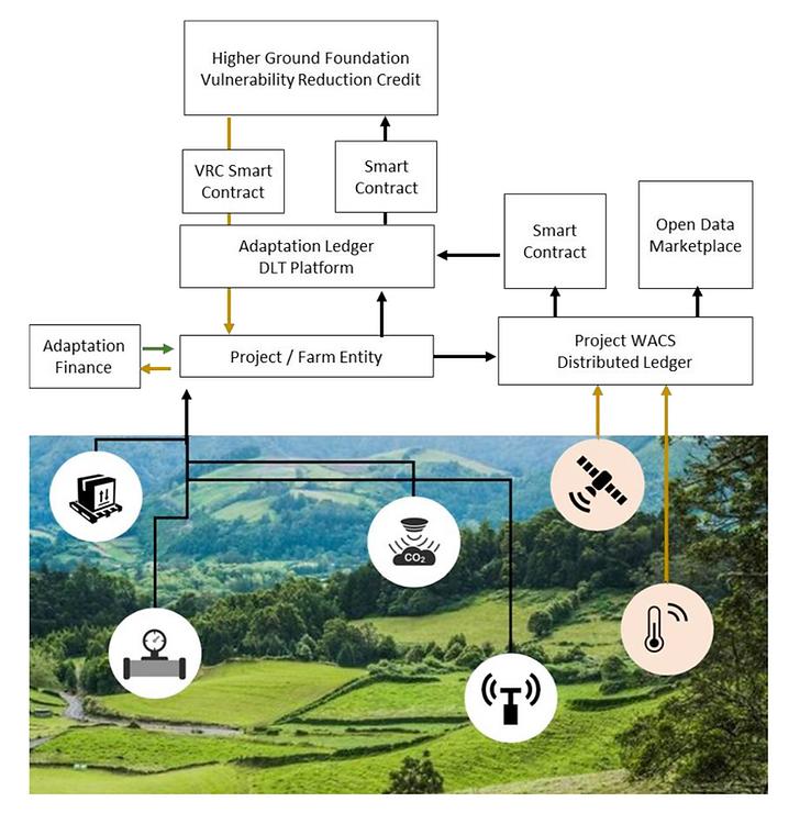 WACS diagram slide Screen Shot 2020-06-2