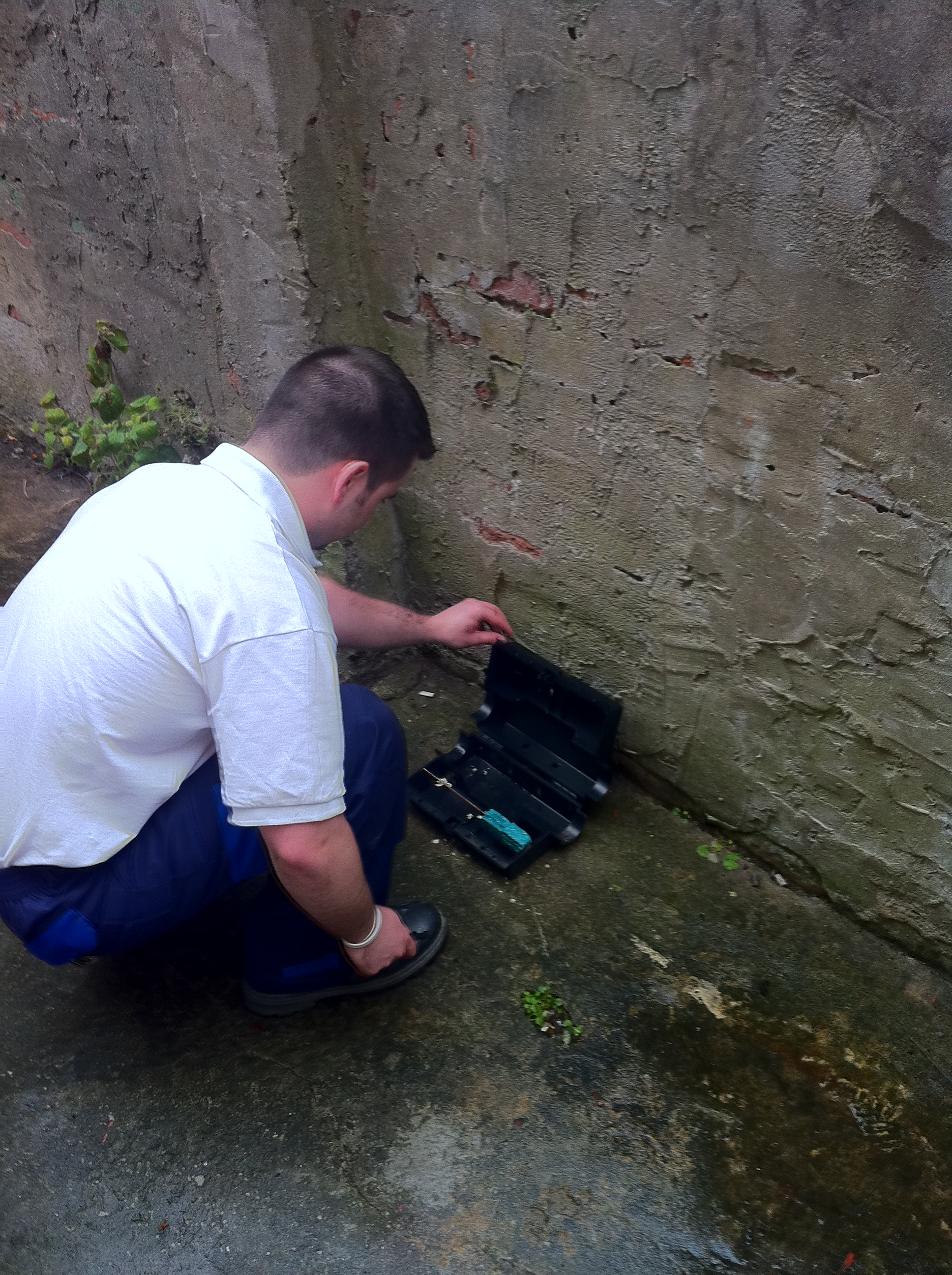 Rodent monitoring