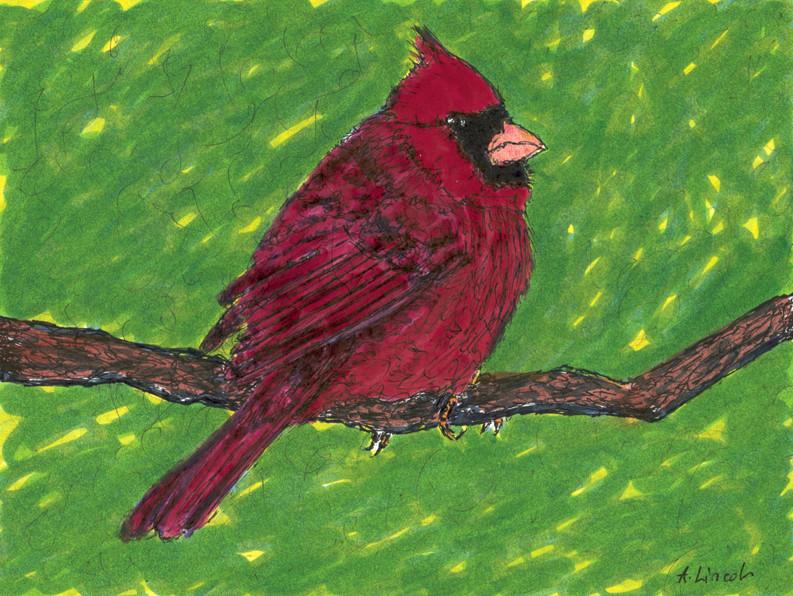 Cardinal 72dpi.jpg