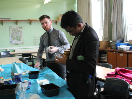 'Feed the Birds' - the Green Team's Winter Project