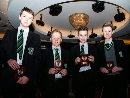 Gael Linn Final Success