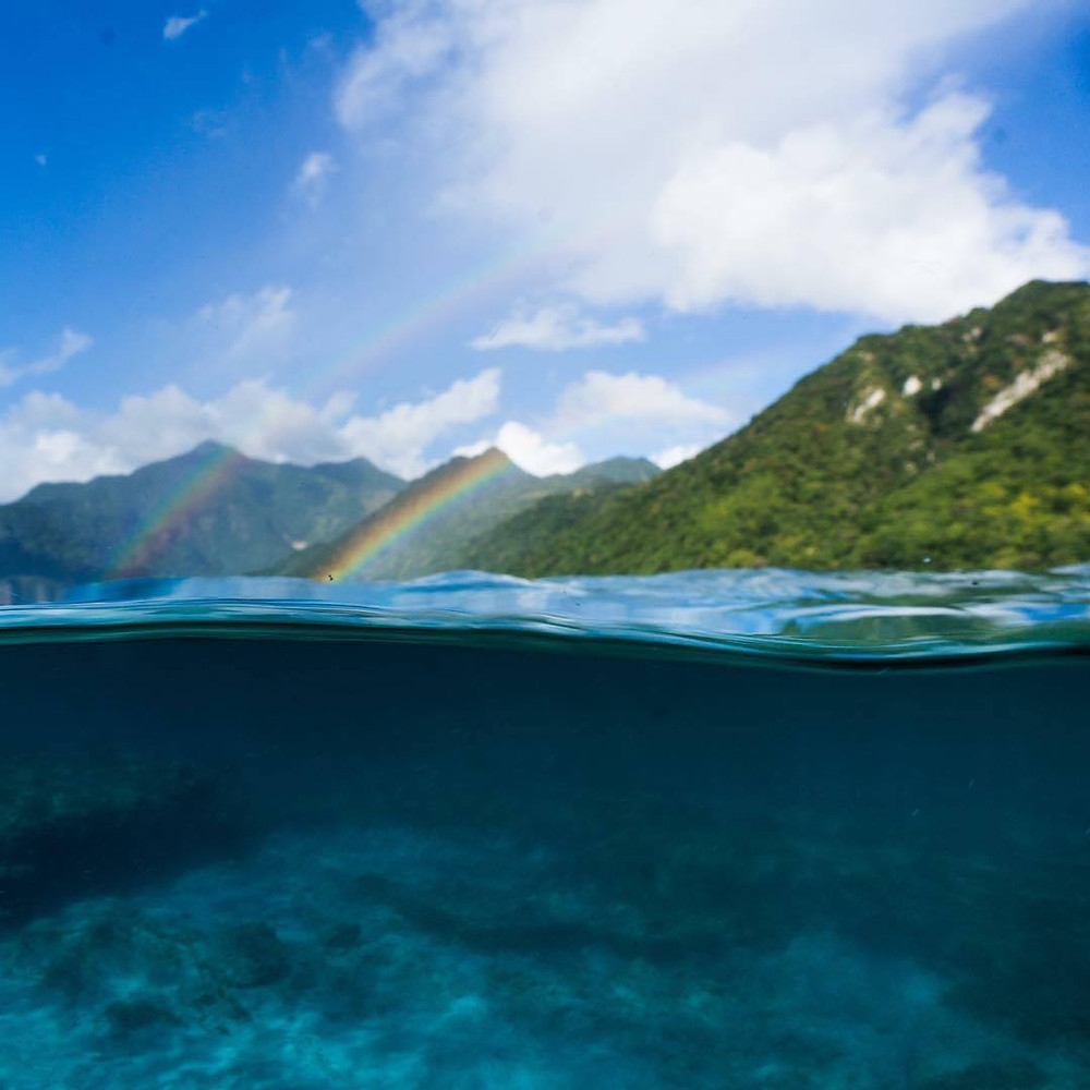 under/over rainbows dominica underwater