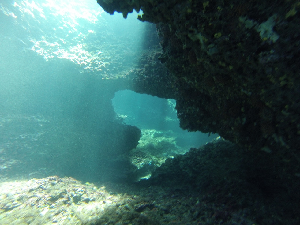 Video: The Blue Holes -  one of Ibiza's underwater cave systems