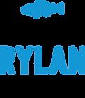discovering-rylan-foundation.png