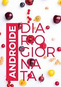 Diario giornata ANDROIDE.png