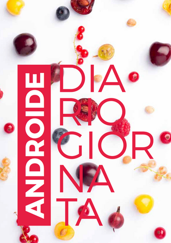 Diario giornata ANDROIDE