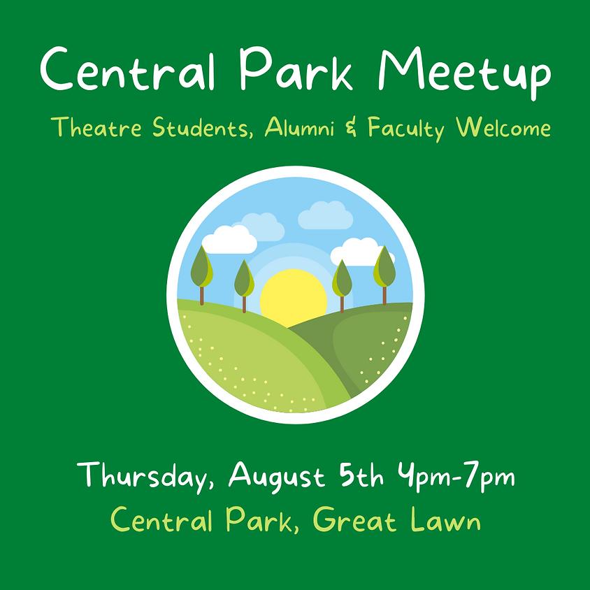 Central Park Meetup