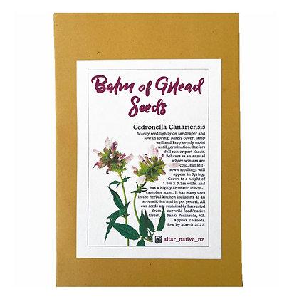 Balm of Gilead Seeds