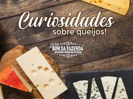 Você vai se surpreender com alguns fatos e curiosidades sobre os queijos!