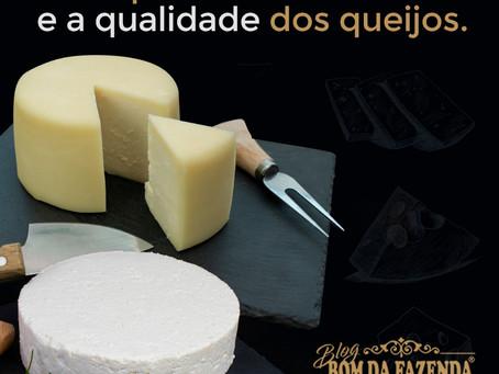 Saiba como manter os queijos sempre saborosos e com qualidade!