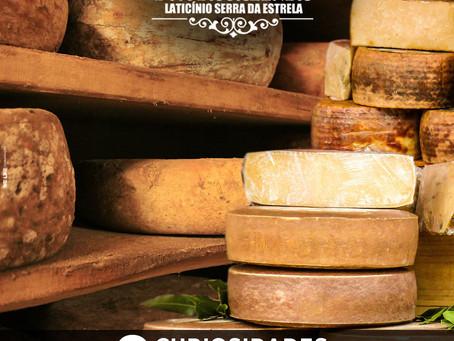 Curiosidades sobre queijos que você não sabia