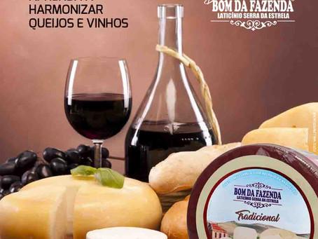 Faça você mesmo: harmonize queijos e vinhos