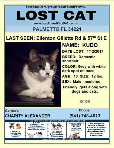 Have you seen Kudo?