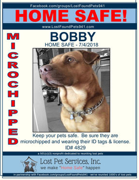 BOBBY HOME SAFE