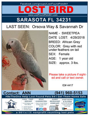 Have you seen SweetPea?