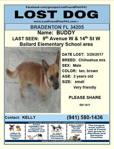 Have you seen Buddy?