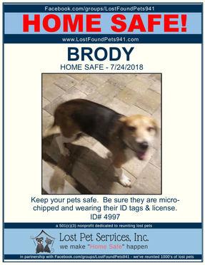 BRODY HOME SAFE