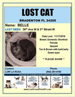 Have you seen Belle?