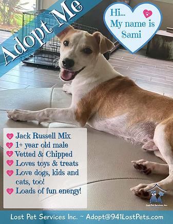 Sami LPS adoption flyer.jpg