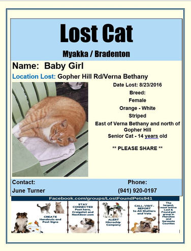 Have you seen Baby Girl?