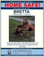 BRETTA HOME SAFE